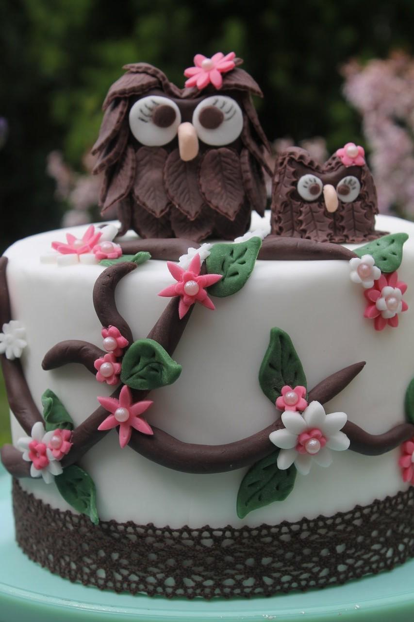 Massa Ticino By Carma Und Eine Zuckersusse 3d Eulen Torte Cuplovecake